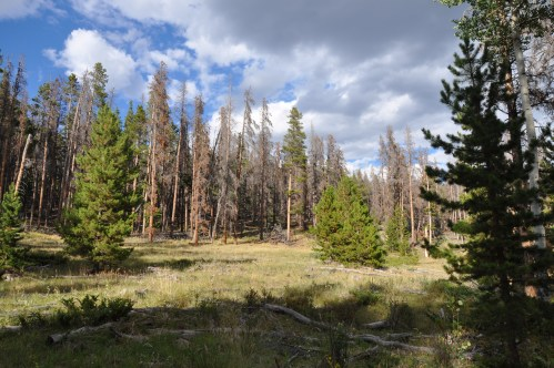Valley Colorado