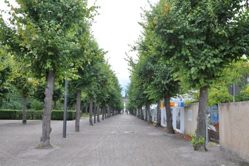 Path at the Schloss Karlsruhe