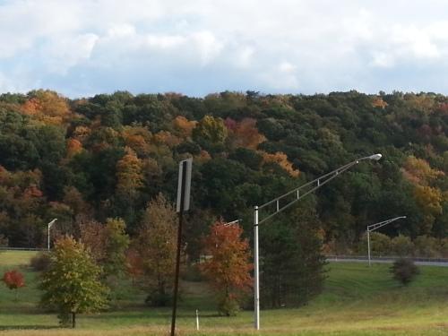 Autumn Leaves Pennsylvania