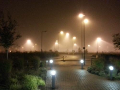 fog in england