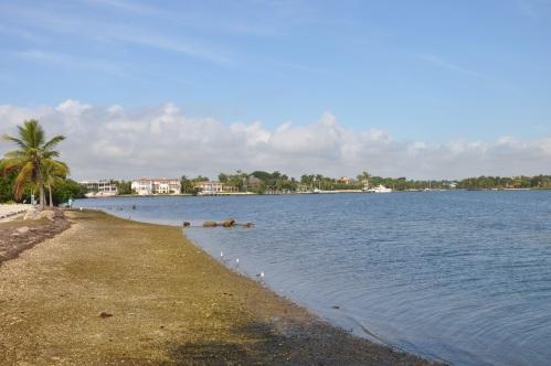 Beach in Miami